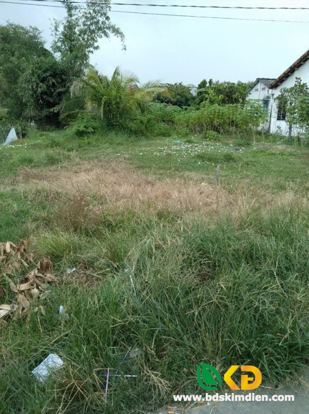 Cần bán gấp lô đất khu vực ấp 7 xã Nhị Thành huyện Thủ Thừa tỉnh Long An.